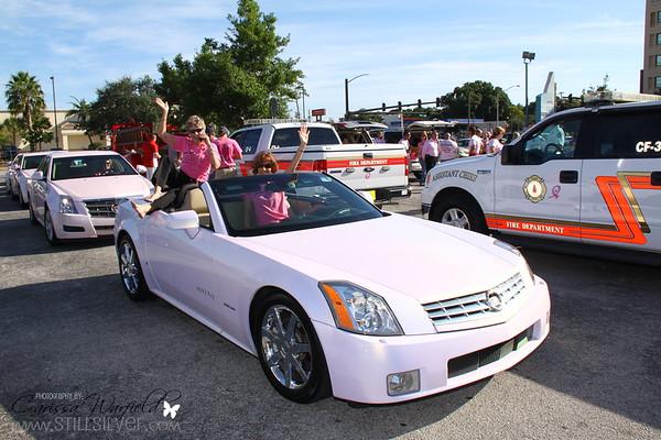 Paint Sarasota Pink