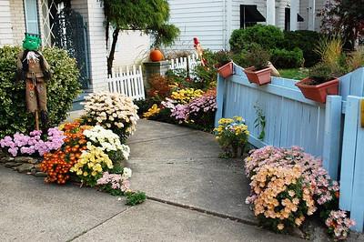 Chronicle readers' fall photos 2