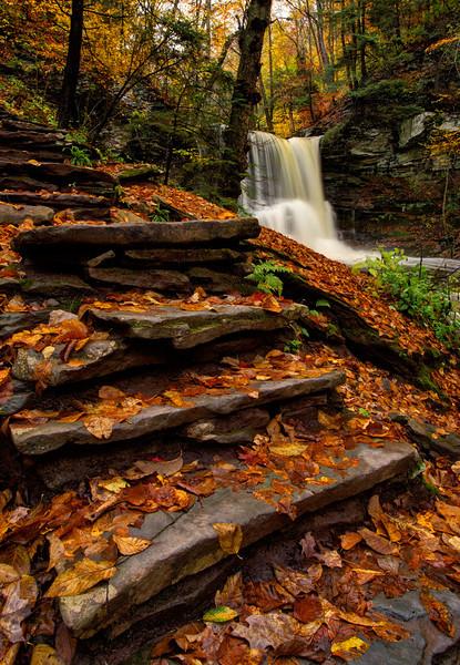Sheldon Reynolds Falls.jpg
