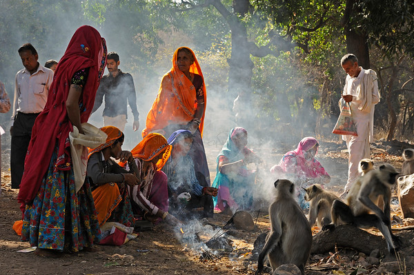 Pilgrims in Ranthambhore national park