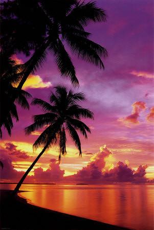 PP30704_Tahitian_Sunset_Posters.jpg