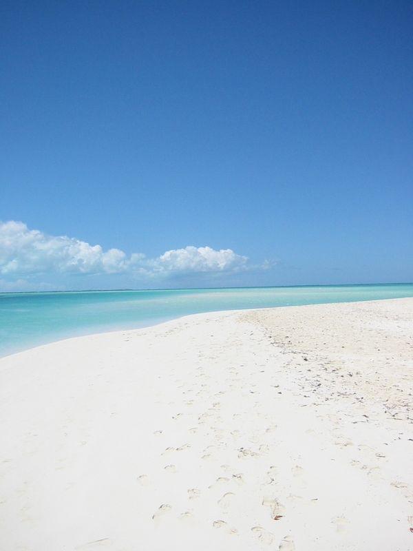 Shell Island, Turks & Caicos