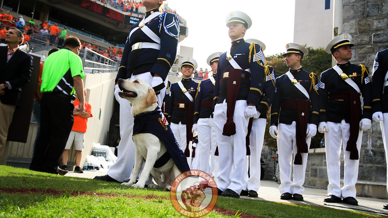 Growley II stands at attention with the rest of the Corps of Cadets before they march into the stadium. (Mark Umansky/TheKeyPlay.com)