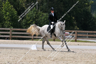 Jennifer	Lewis	riding	Breezy Vintage Diamond	#	341