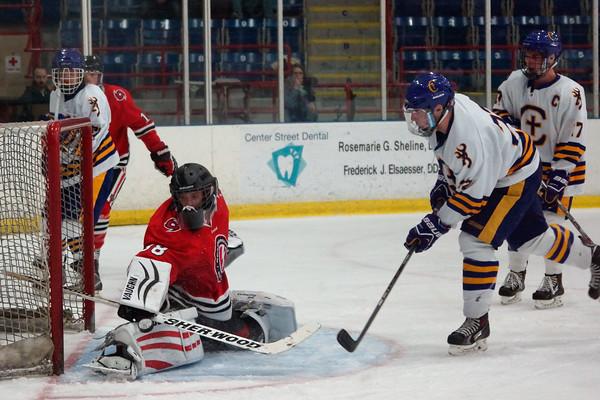 2014-2015 Hockey young men's