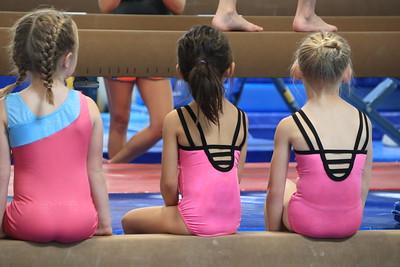2018-04-28 Gymnastics Evaluation