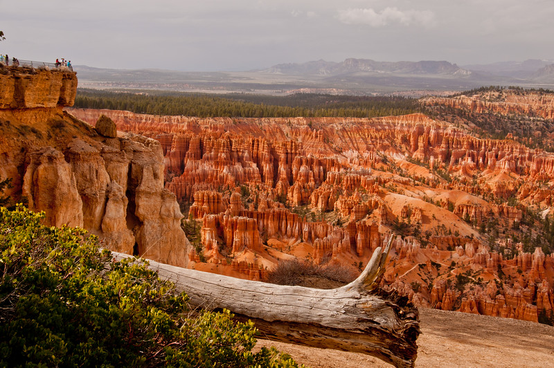Bryce Canyon (6 of 26)
