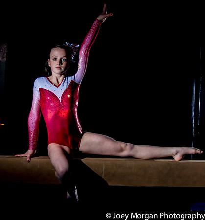 Abbi Gymnastics Private