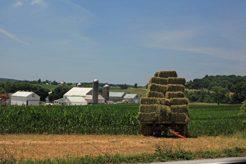 Amish country, PA 6413.jpg