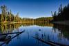 Scaup Lake Reflected