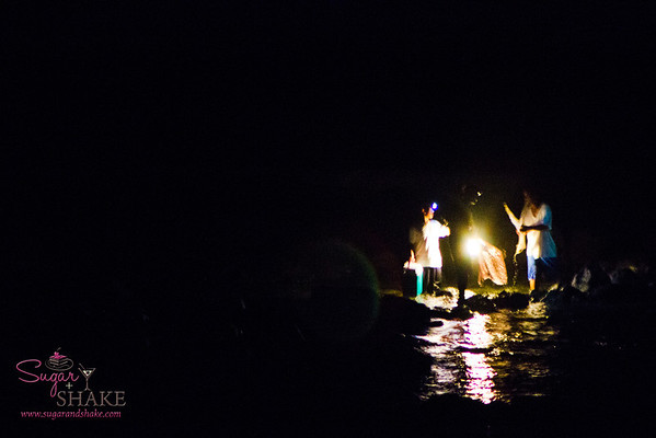 We were about to leave for dinner when Shake noticed lights out on the reef. Guys were out with nets and spears, probably looking for octopus. © 2012 Sugar + Shake