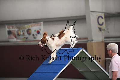 JAG AKC Agility Trial August 4-6