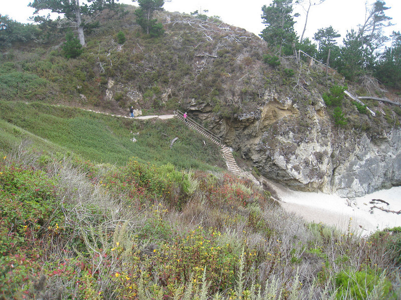 Point Lobos 8:2009 5.jpg