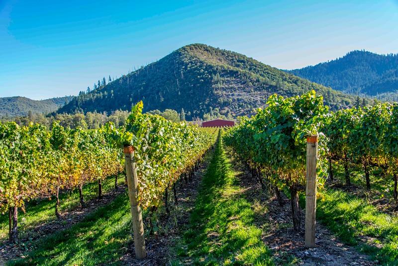 Del Rio Winery-4.jpg