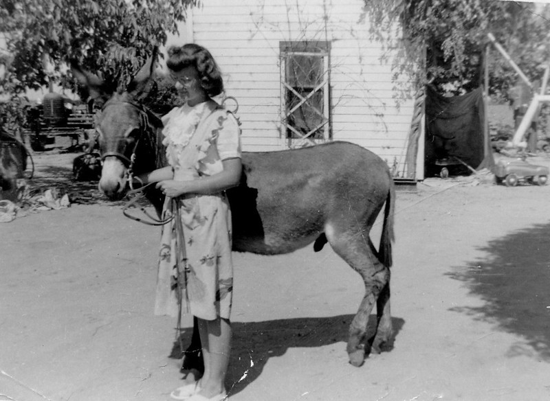 Frankie Siemens with our donkey, early '50s