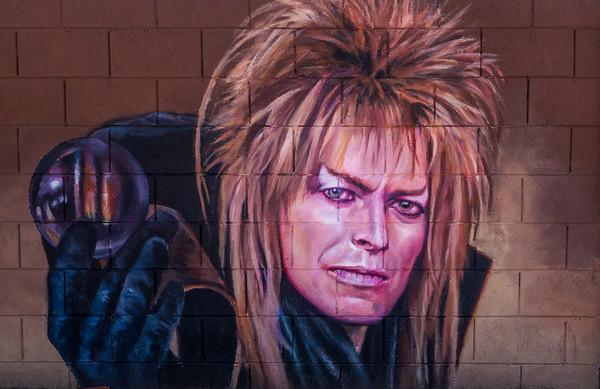 Phoenix Wall Art 2016