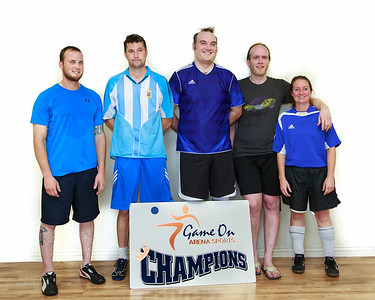 2014 Winter 2 Co-Ed Over 30 DV Champions