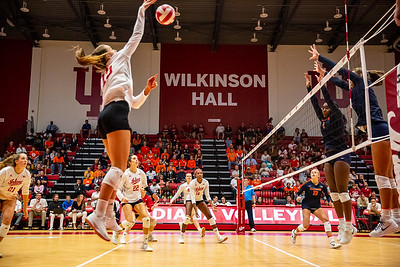 Indiana University Volleyball