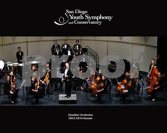 SDYS Chamber Orchestra Group