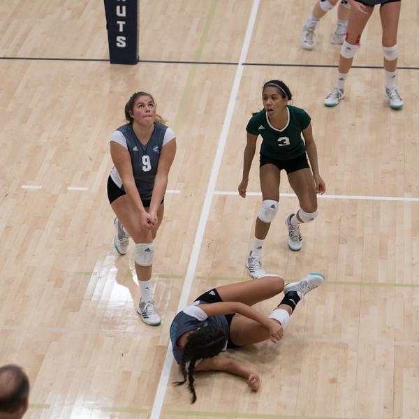HPU Volleyball-93081.jpg