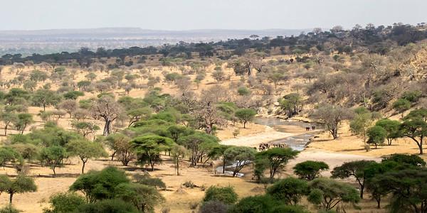 Tanzania 2017 Scenes