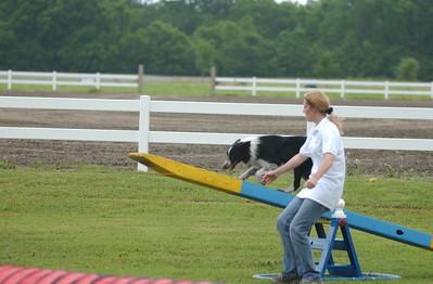 Pet Fest 2003