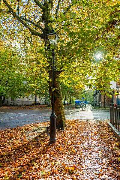 Liverpool in Autumn