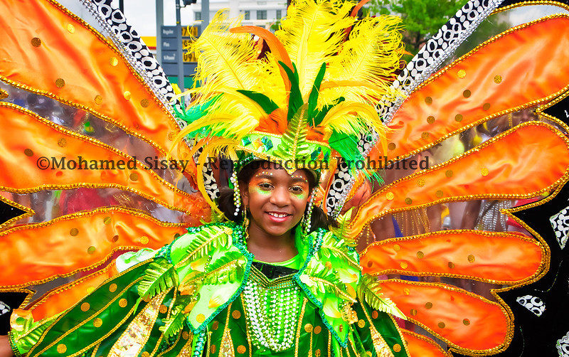 D.C Caribbean Carnival 2011