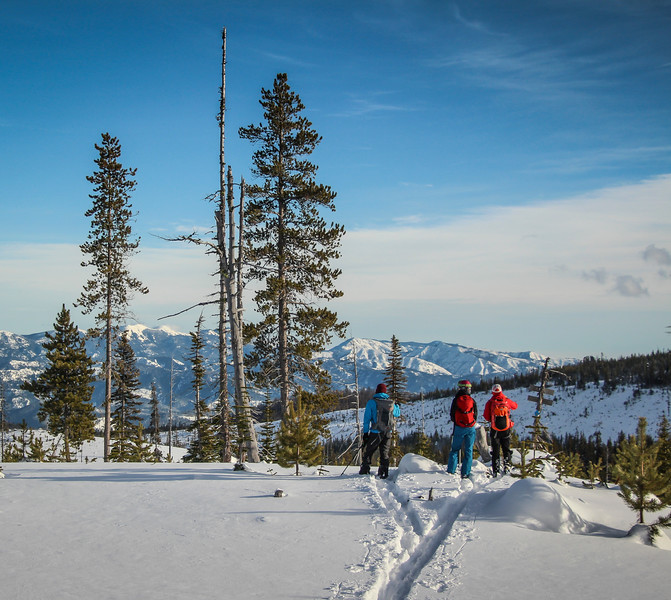backcountryskiing-skiing-backcountry-touring-winter-pnw-snow-mountains-landscape.jpg