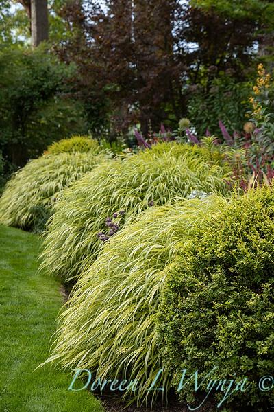 Whit & Mary Carhart garden_6188.jpg
