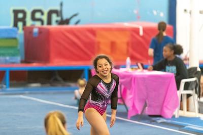 Brianna's Gymnastics Meet