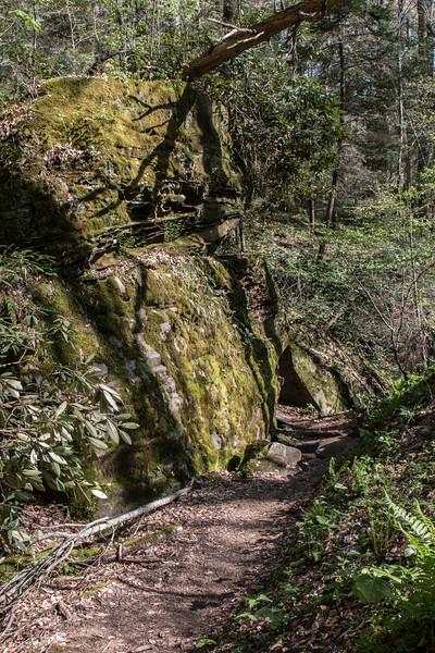 Part of the Garden Trail.