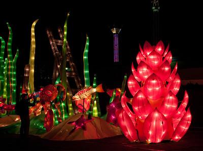 Puyallup Fair 2013 Night Photography