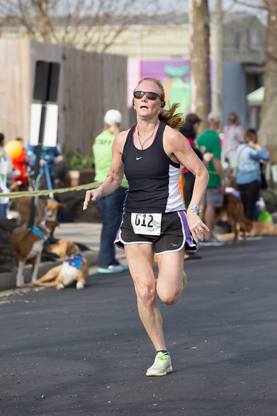 15thRichmondSPCADogJog-92.jpg