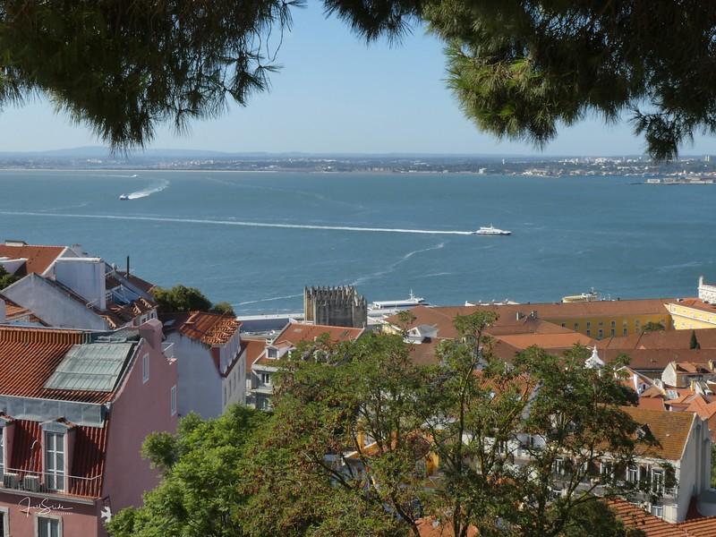 Lisbon August 19 -89.jpg