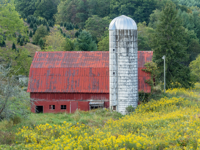 20 Barn Ashe County  (1 of 1).jpg