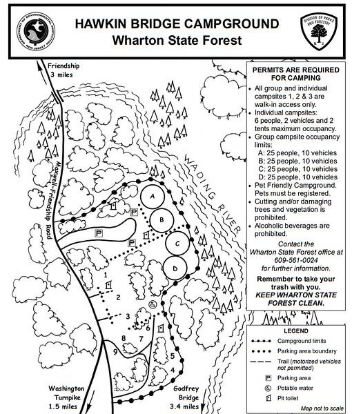 Wharton State Forest (Hawkin Bridge Campground)