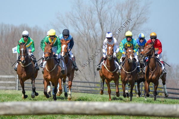 My Lady's Manor Steeplechase Races April 12, 2014
