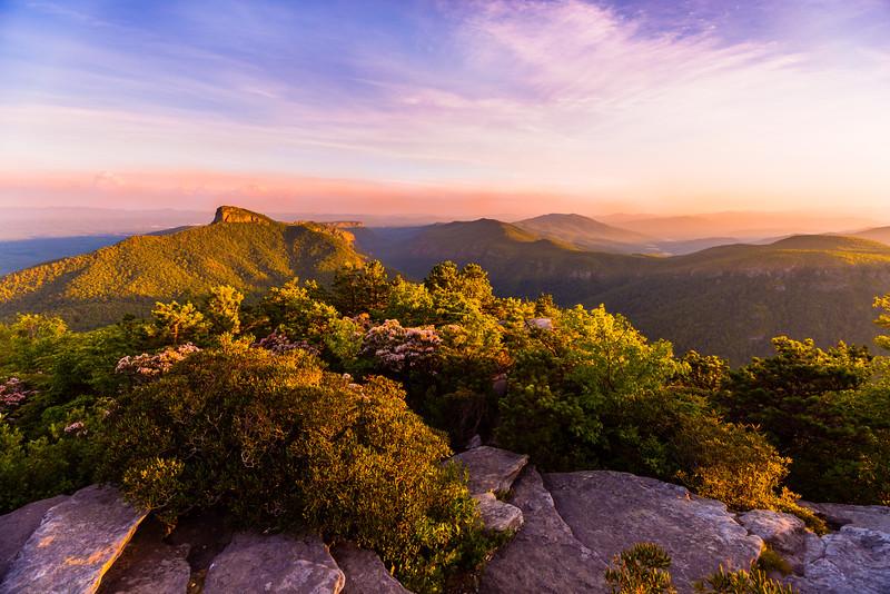 Mountain Laurel Sunset on Hawksbill