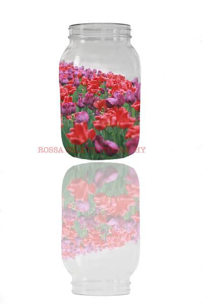 Flower jar w flower reflec 3.jpg