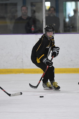 Girls 12U T3L - Bulldogs Hockey Club