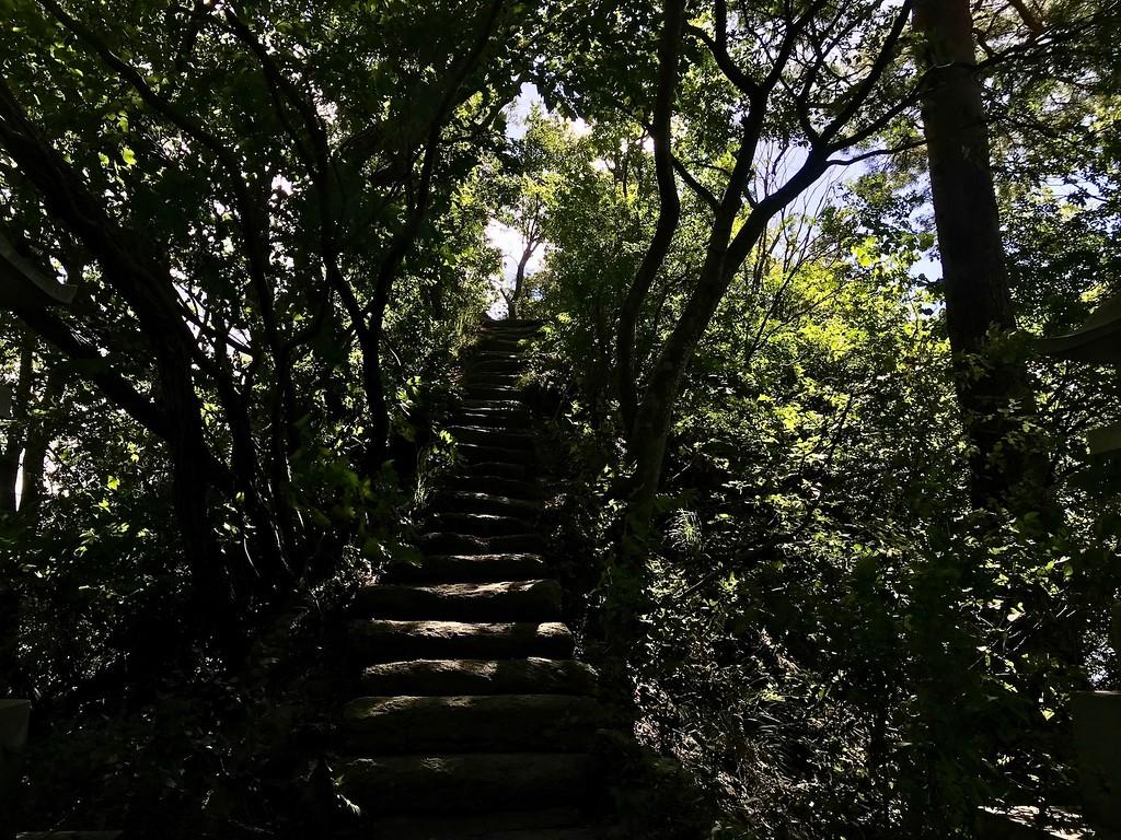 A narrow set of stone steps.