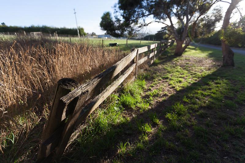 Tasmania_2015_305.jpg