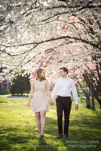 cherry blossom portraits arlington va (14).jpg