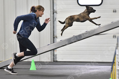 Paws n' Effect CPE Agility Trial, Feb. 3-4, 2018