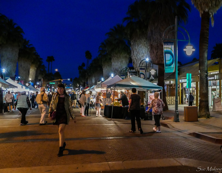 Palm Springs Street Fair (16 of 29).jpg