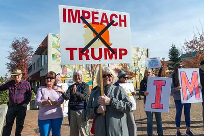 Impeach Now Action - Nov.7/19