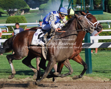 The Whitney Handicap 2010 (G1)