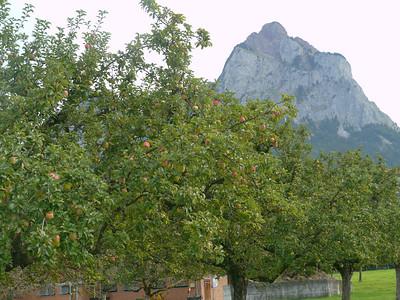 Sept. 2010: Velo-Mittwochspritztour m. Richi u. Heinz von Muotatal nach Spirigen (via Chinzig Chulm).