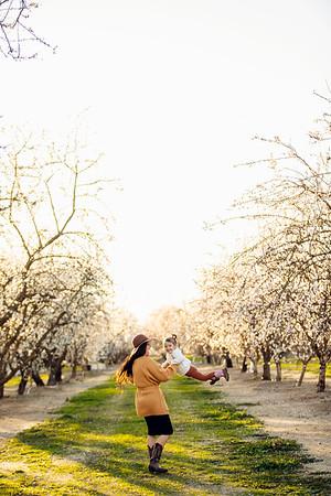 G Hismatullin Family Almond Blossoms 2021